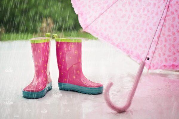 雨の日の様子
